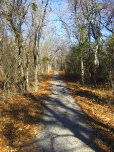 Path at Chicksaw National Park