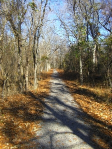 Path at Chicksaw National Park